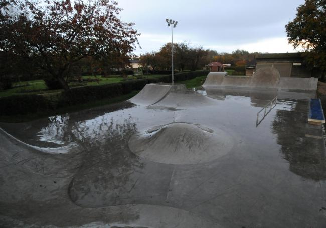 Jo and Simon Windsor who have started a Crowdfunding campaign to get the floodlights fixed at Fordingbridge Skatepark DC9304P1 Picture by Tom Gregory.