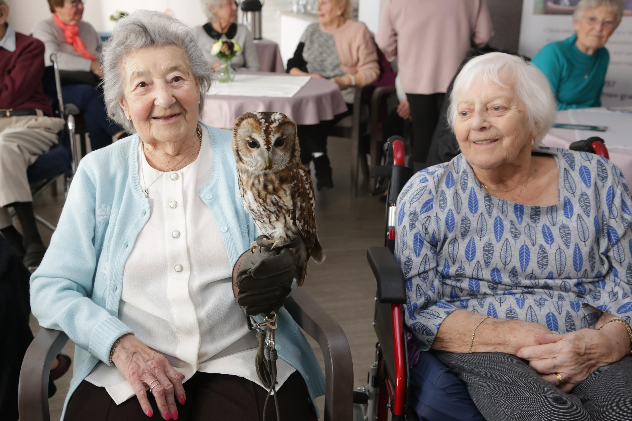 Bird is the word! Hythe care home residents spread their wings to celebrate the best of British birds
