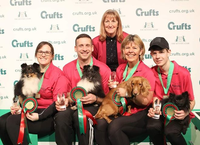 'What's better than winning Crufts?' - Handler's delight as team scoops coveted title