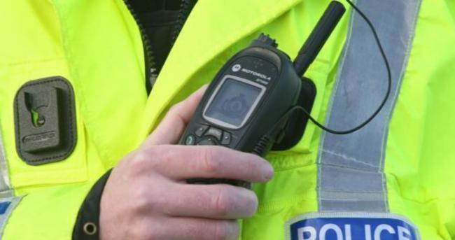 Wiltshire police were called after a concerned member of the public reported the incident