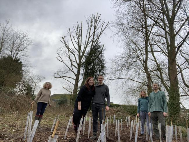Fordingbridge Greener Living planting a 'mini forest' to increase biodiversity