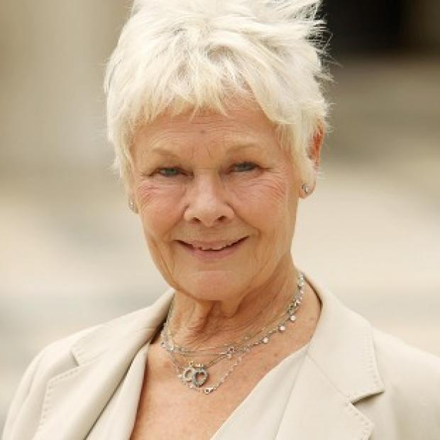 Dame Judi Dench starred in The Best Exotic Marigold Hotel