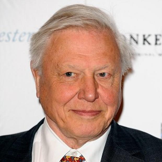 Sir David Attenborough will be taking part in the programme