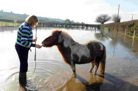 Fiona McKie with her pony Frogspawn