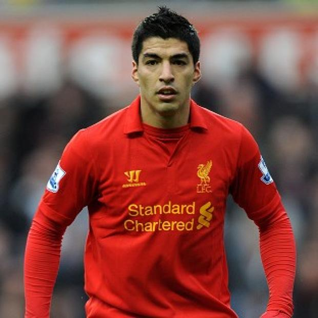 Jose Enrique likened Luis Suarez, pictured, to Lionel Messi of Barcelona