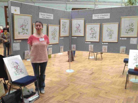 Exhibitions for botanical artist