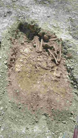 Ancient skeletons uncovered in Amesbury