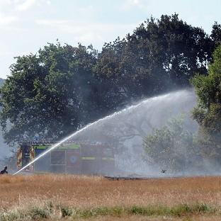 Salisbury Journal: Firefighters tackle a grass fire on the edge of Epping Forest near Wanstead