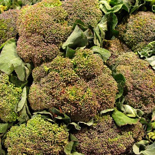Eating broccoli could help prevent or slow the most common form of arthritis