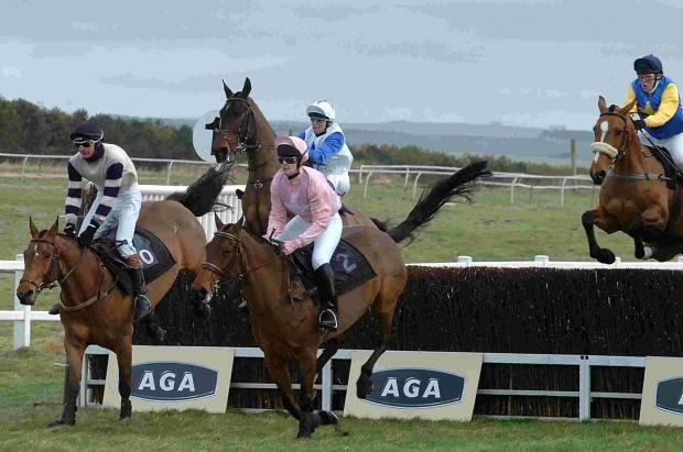 Gwanako and Master Medic set for battle at Larkhill's point-to-point