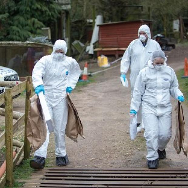 Salisbury Journal: Police at the murder scene at Keepers Cottage Stud