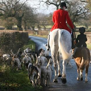 Salisbury Journal: Campaigners want the Government to scrap a ban on hunters using more than two dogs to flush out foxes