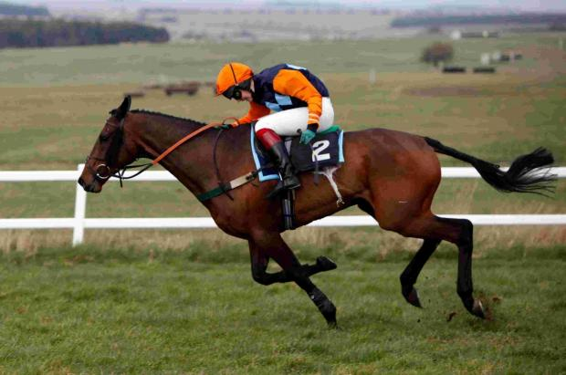 Maiden double for Bandey at Larkhill point-to-point