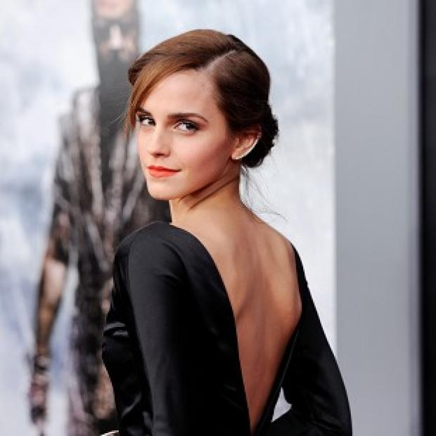 Salisbury Journal: Emma Watson played it safe in black at the New York premiere of Noah