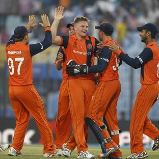 Timm van der Gugten, centre, celebrates with his team-mates after dismissing Eoin Morgan (AP)