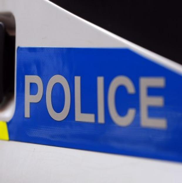 Salisbury Journal: Police said the light aircraft came down at Colyton near Lyme Regis