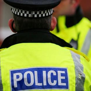 A police watchdog warned some forces may struggle to cope with major crimes in the next few years