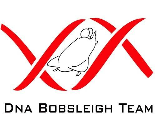 Bobsleigh team looking for sponsers