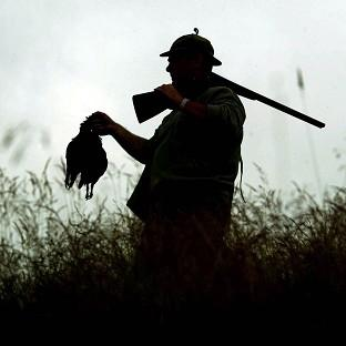 The grouse shooting season begins on Tuesday