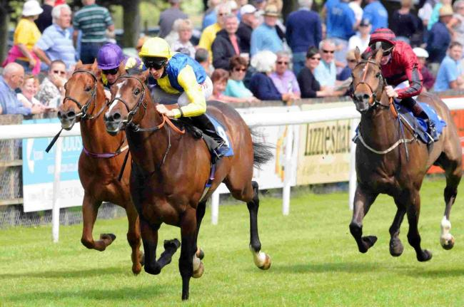 City racecourse to begin hosting fixtures from July - after nine month absence