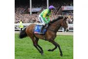 Kauto Star won the King George VI Chase at Kempton five times and became the first horse to regain the Cheltenham Gold Cup