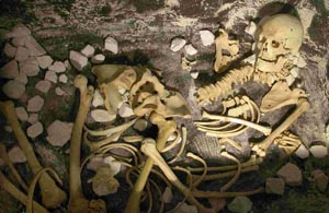 The skeleton discovered at Stonehenge in 1978, which has been on display in Salisbury Museum.