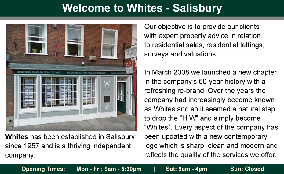 Salisbury Journal: fs