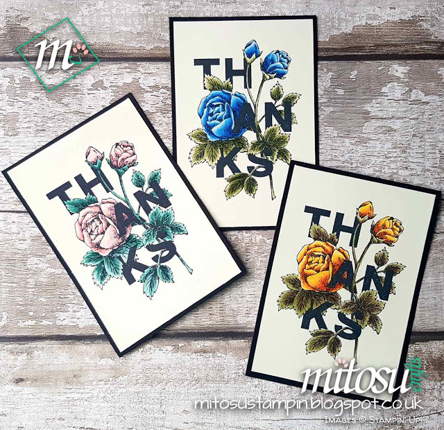 Stampin Up Card Making Workshop