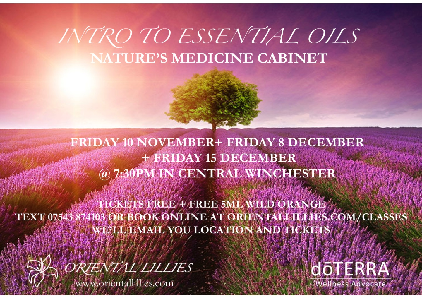 Intro to essential oils - Nature's medicine cabinet