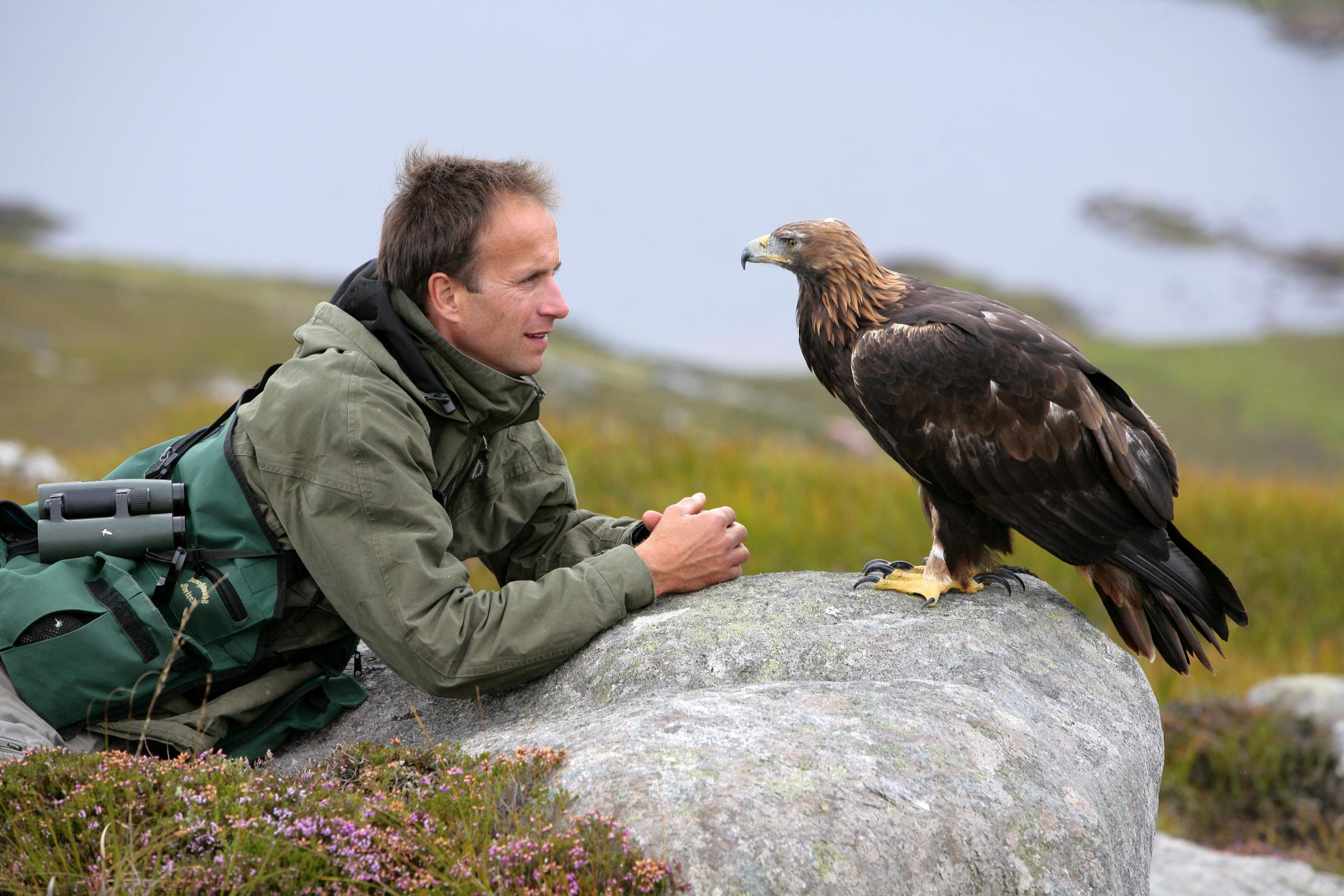 Lloyd Buck, professional bird trainer, with 'Tilly' a female Golden Eagle  Picture copyright of John Waters