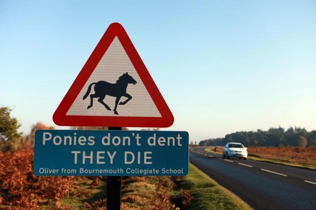 A New Forest sign warning drivers not to speed