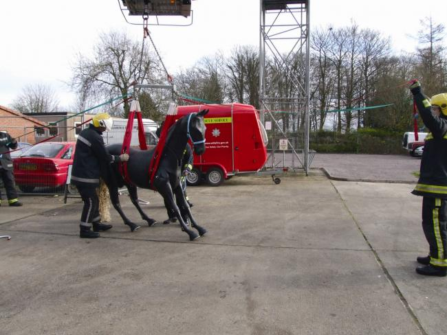 firefighters get to grips with a mannequin horse