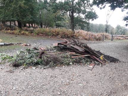 Fly-tipping at Newlands Plantation, Rockford