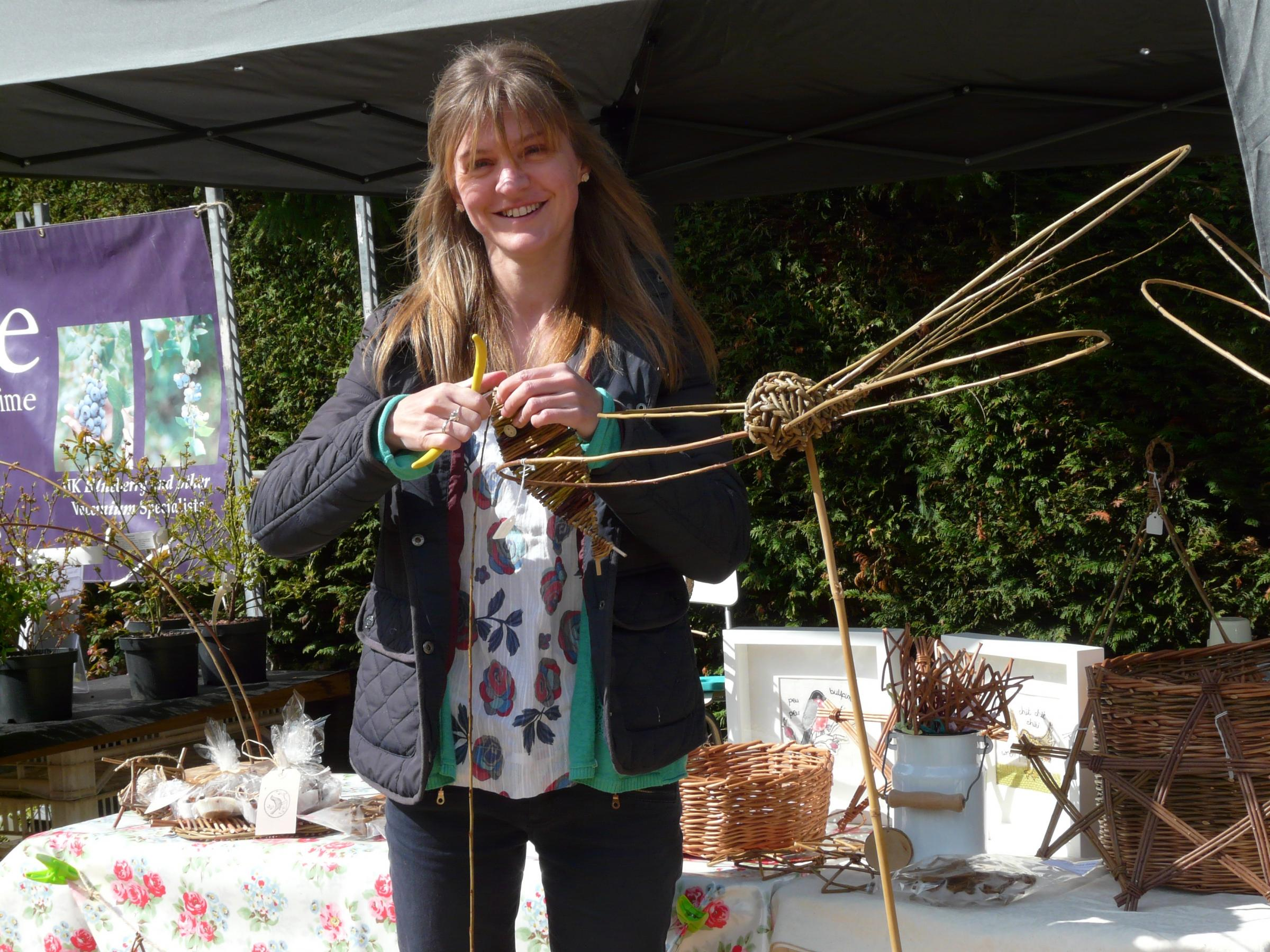 Saturday Special; Willow Workshop 'Dragonflies' – with Tracy Standish