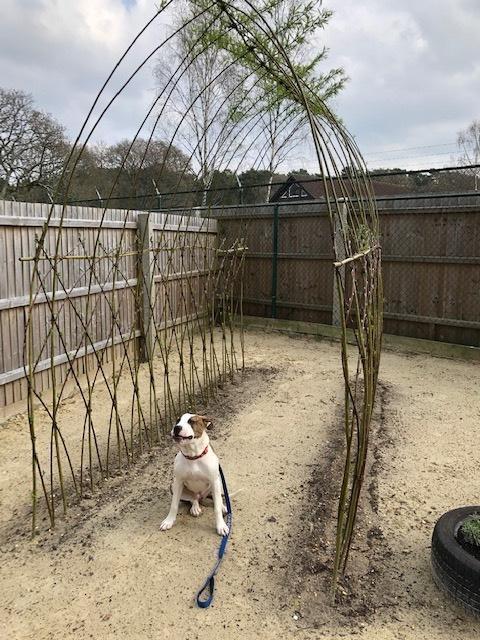 New sensory garden at RSPCA's animal rescue centre in Ashley Heath